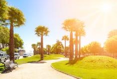 Bandejon com as palmas em Vina del Mar, o Chile fotografia de stock