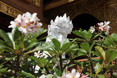 Banden寺庙,在chiangmai的美丽的寺庙 免版税库存图片