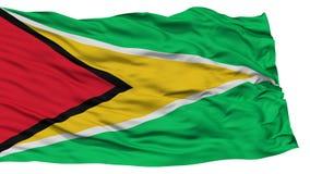Bandera aislada de Guyana imágenes de archivo libres de regalías