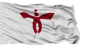 Bandera aislada de la ciudad de Nishiwaki, prefectura Hyogo, Japón almacen de video