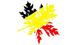 Bandera alemana en las hojas de la papaya Foto de archivo libre de regalías