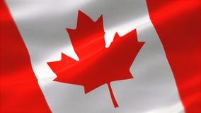 bandera altamente detallada 4k de Canadá ilustración del vector