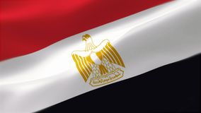 bandera altamente detallada 4k de Egipto ilustración del vector