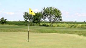 Bandera amarilla del golf almacen de video