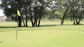 Bandera amarilla del golf almacen de metraje de vídeo