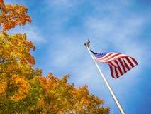 Bandera americana con los tops de oro del árbol del otoño Imagen de archivo