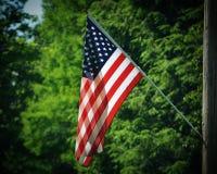 Bandera americana contra árboles verdes Fotografía de archivo
