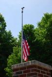 Bandera americana del medio palo Fotografía de archivo
