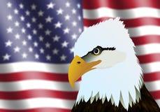 Bandera americana y Eagle Head Imagen de archivo libre de regalías