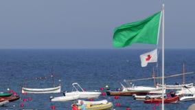 Bandera amonestadora verde 02 almacen de metraje de vídeo