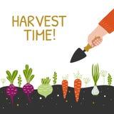 Bandera brillante del tiempo de cosecha El hombre está cosechando en un campo stock de ilustración
