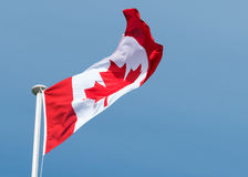 Bandera canadiense de la hoja de arce de Canadá Imagen de archivo