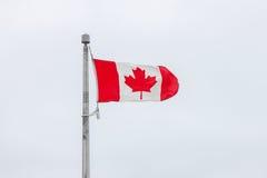Bandera canadiense en el aleteo de poste en viento foto de archivo libre de regalías