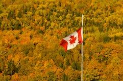 Caída canadiense Fotos de archivo