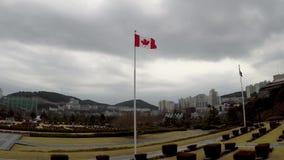 Bandera canadiense que agita en el aire del cementerio conmemorativo de la O.N.U en Busán, Corea del Sur, Asia metrajes