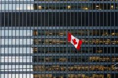 Bandera canadiense y edificio de oficinas moderno en Toronto céntrico Foto de archivo libre de regalías