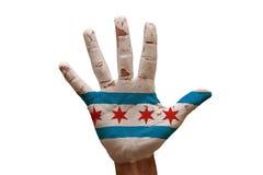 bandera Chicago de la palma imagen de archivo