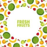 Bandera colorida de las verduras frescas y de las frutas con el espacio para el ejemplo del vector del texto ilustración del vector