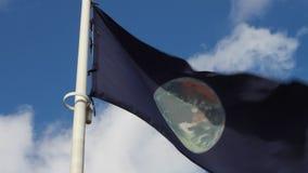 Bandera con el globo en el viento almacen de metraje de vídeo