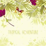 Bandera con el lugar para el texto y flores, hojas de palma y mariposas tropicales ilustración del vector