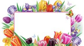 Bandera con las flores multicoloras de la primavera libre illustration