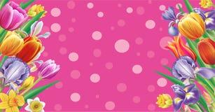 Bandera con las flores multicoloras de la primavera ilustración del vector