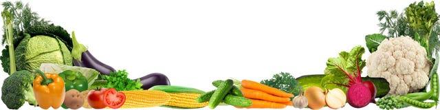 Bandera con una variedad de verduras Imagen de archivo libre de regalías