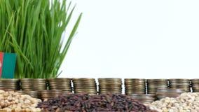 Bandera de Afganistán que agita con la pila de monedas del dinero y las pilas de semillas del trigo almacen de video