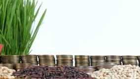 Bandera de Andorra que agita con la pila de monedas del dinero y las pilas de semillas del trigo almacen de video