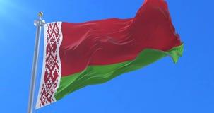 Bandera de Bielorrusia que agita en el viento en lento con el cielo del bue, lazo