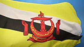 Bandera de Brunei ilustración del vector