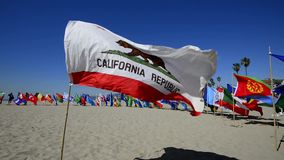 Bandera de California almacen de metraje de vídeo