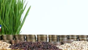 Bandera de Costa Rica que agita con la pila de monedas del dinero y las pilas de trigo almacen de video