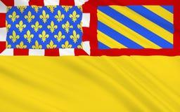 Bandera de Cote d'Or ilustración del vector