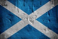 Bandera de Escocia Imágenes de archivo libres de regalías