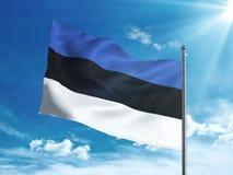 Bandera de Estonia que agita en el cielo azul Foto de archivo