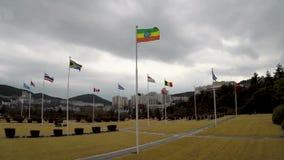 Bandera de Etiopía que agita en el aire del cementerio conmemorativo de la O.N.U en Busán, Corea del Sur, Asia almacen de video
