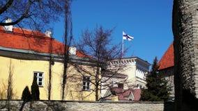 Bandera de Finlandia que agita sobre la embajada de Finlandia almacen de video