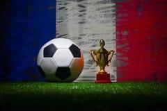 Bandera de Francia, campeón de oro \ 'taza de s y balón de fútbol en hierba Deporte del concepto Imagen de archivo