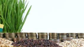 Bandera de Guinea-Bissau que agita con la pila de monedas del dinero y las pilas de trigo almacen de video