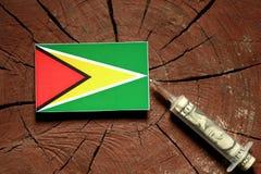Bandera de Guyana en un tocón con la jeringuilla que inyecta el dinero imágenes de archivo libres de regalías