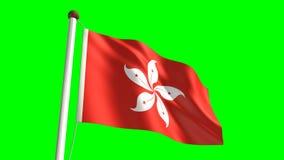 Bandera de Hong Kong ilustración del vector
