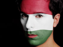 Bandera de Hungría Imágenes de archivo libres de regalías