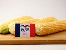Bandera de Iowa en un panel de madera con el maíz aislado en un backgr blanco Imágenes de archivo libres de regalías