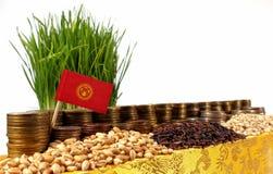 Bandera de Kirguistán que agita con la pila de monedas del dinero y las pilas de trigo fotografía de archivo libre de regalías