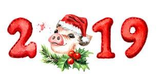 Bandera de la Feliz Año Nuevo 2019 Cerdo lindo con números Muestra del zodiaco Ejemplo dibujado mano de la acuarela, aislado en e libre illustration