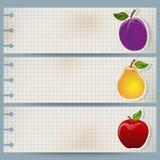 Bandera de la fruta de la vendimia libre illustration