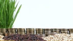 Bandera de la Guinea Ecuatorial que agita con la pila de monedas del dinero y las pilas de trigo metrajes