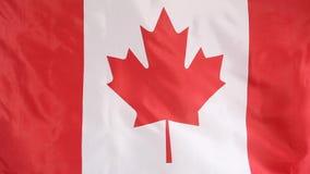 Bandera de la materia textil de Canadá almacen de video