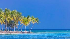 Bandera de la playa y fondo tropicales del paisaje del verano Las vacaciones y el día de fiesta con las palmeras y la isla tropic fotografía de archivo libre de regalías
